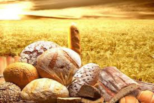 Dietetyk: widoczny jest powrót do starych odmian zbóż