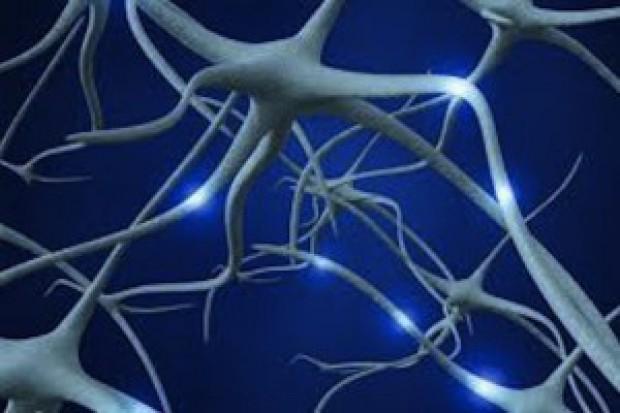 Olsztyn: eksperymentalna terapia komórkami macierzystymi w SM