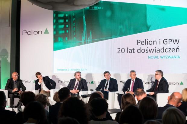 20 lat spółki Pelion na giełdzie - podsumowanie