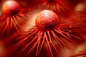 """Makrofag jako """"koń trojański"""" zaniesie lek do guza"""