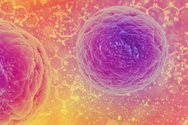 EMA ostrzega przed stosowaniem niepotwierdzonych terapii komórkowych