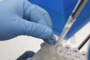 Komitet przy EMA rekomenduje szczepionkę przeciwko dendze