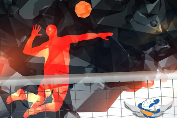 Kraków: izba wznawia treningi piłki siatkowej i halowej nożnej
