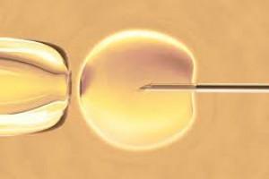 Podpoznańska gmina dofinansuje zabiegi in vitro