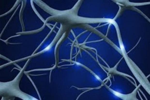Eksperci: nowe terapie na SM hamują postęp niepełnosprawności