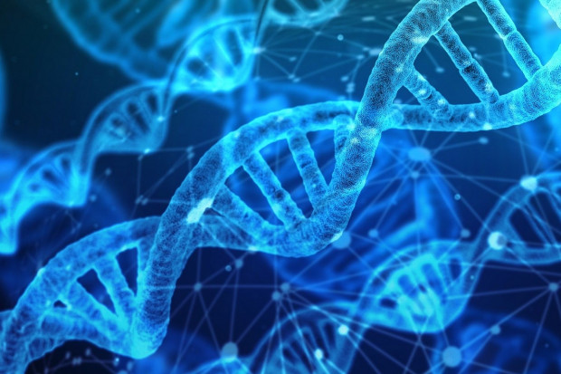 Główny gen groźnej białaczki odkryty