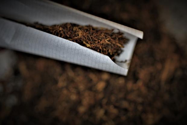 Ekspert: cięższy przebieg COVID-19 u palaczy. Ale sama nikotyna może być przydatna