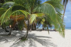 Szczepienia: jakie zagrożenia czekają na turystów w tropikach i jak się przed nimi chronić
