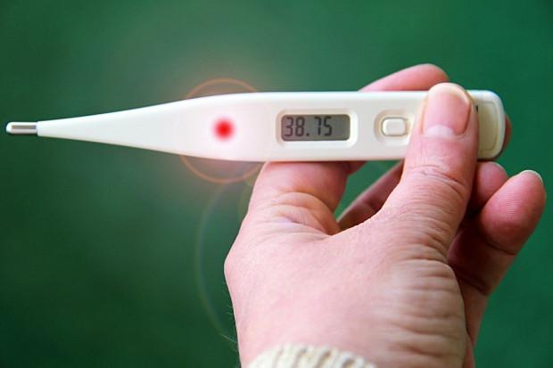 Przejście grypy na wczesnym etapie życia wytwarza odporność na późniejsze infekcje?