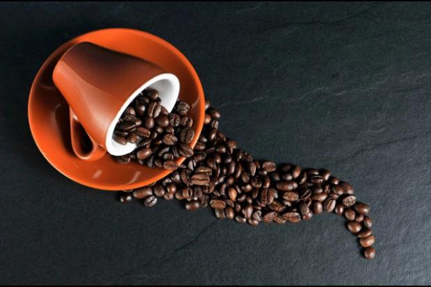 W jakim stopniu kofeina wpływa na działanie leków przeciwpadaczkowych?