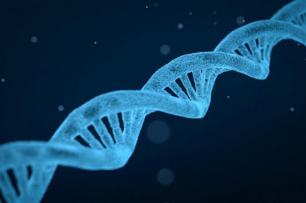 Terapie genowe, komórkowe, RNA: ich rozwój nabiera tempa