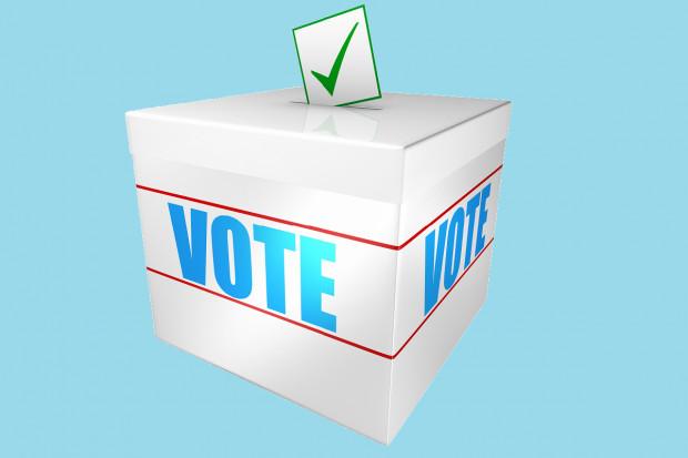 Najbliższe wybory do samorządu aptekarskiego w formie elektronicznej? Postulat trafił do MZ